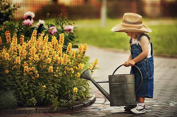 little-gardener